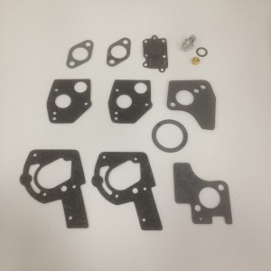 Briggs and Stratton Carb Overhaul Kit 495606